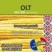 Samanta porumb OLT, sac 20kg, (grupa FAO 430)